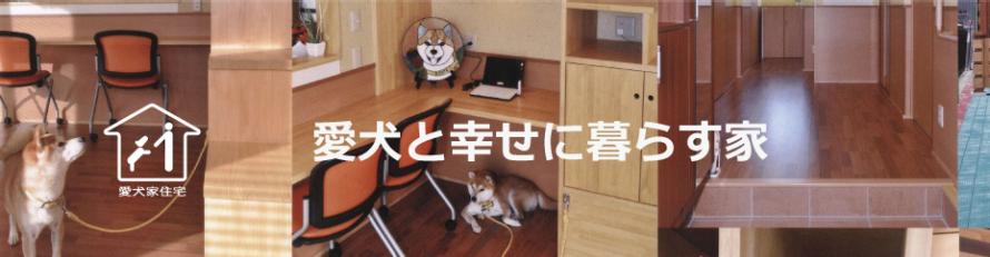 imai-aiken-saijyo